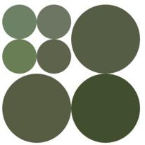 Image DOT : Enregistrement de données et algorithmes récursifs