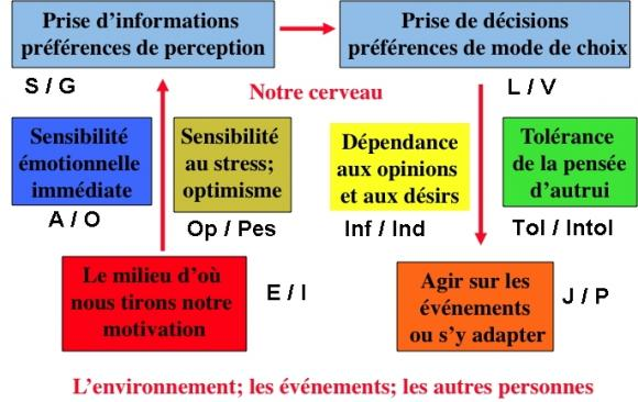 http://lancien.cowblog.fr/images/Prefcerebrales/schemaglobalpref09jpg@250x140.jpg