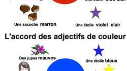 Carte Mentale Accord Adjectif De Couleur.Profil De 4ailes Eklablog