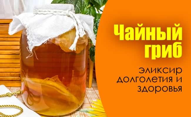 Польза чайного гриба диабете
