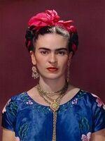 Etude en cours de français 3ème1 des oeuvres de Frida Kahlo