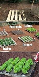 Des belles idées récup et recyclage pour le jardin ! 002