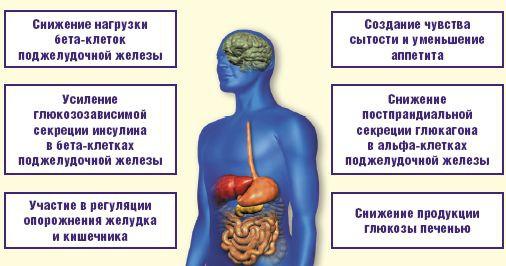 Как влияет сахарный диабет на организм человека