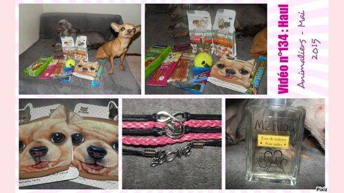 Haul | Zooplus, Ebay, Animalerie ... Mai 2015