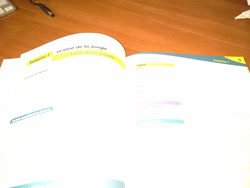 La grammaire au jour le jour CE2/CM1/CM2 an 2