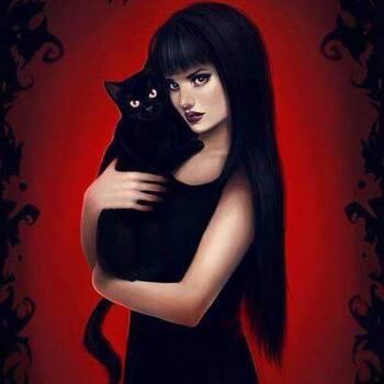 Le chat de la dame en noir