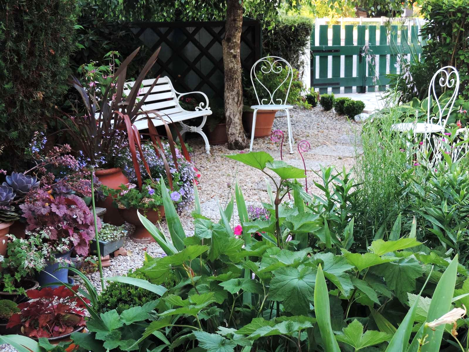 Rétrospective au jardin : Août 2013