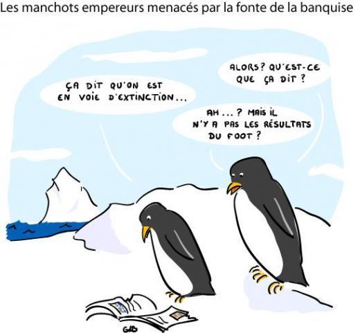 http://lancien.cowblog.fr/images/Animaux4/h2014037101233173285@250x140.jpg