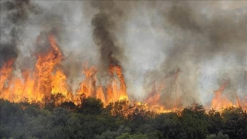 - En « missionné » de puissance étrangères : Le MAK, veut-il brûler l'Algérie ?