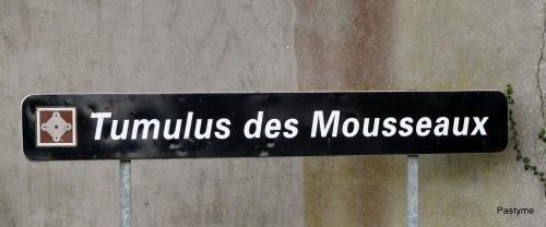 Tumulus des Mousseaux à Pornic