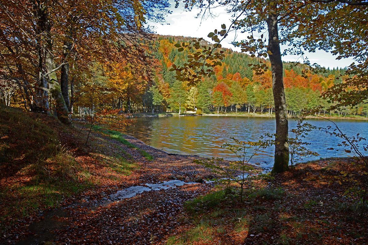 Lac des Picades