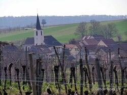 une église derrière la vigne