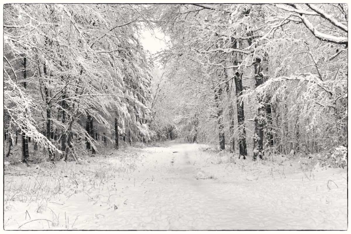 Paysages divers pour clichés d'hiver !