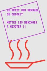 Petit Jeu Mensuel de Cricket