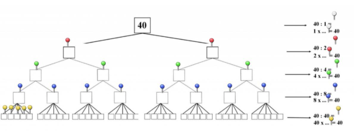 arbre 40 presentation
