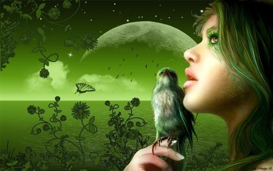 """Résultat de recherche d'images pour """"image de la nature verte"""""""