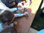 Journée à la ferme d'argile de Passavant-en-Argonne