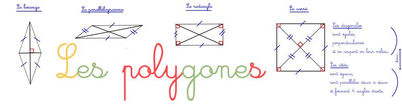 Les  polygones .