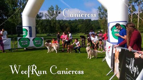 CANICROSS | WOOFRUN course chronométrée - Départ & 3eme gués