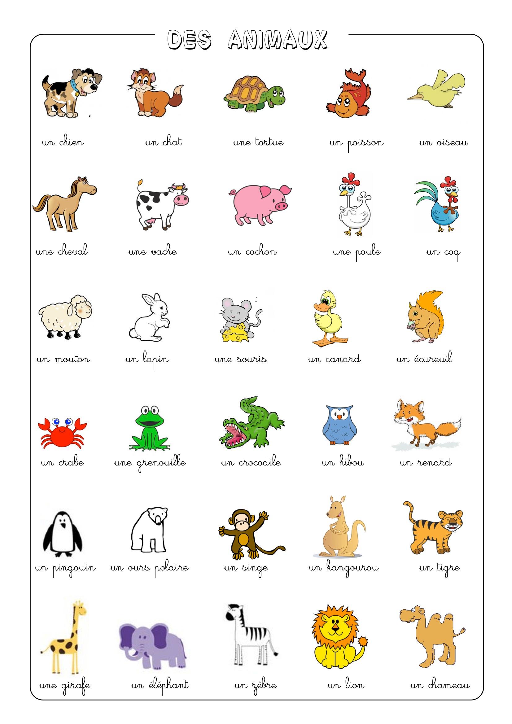 Extraordinaire Liste Des Animaux En Anglais VJ41 | Montrealeast TS96