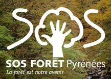 Protégeons la forêt de nos montagnes !
