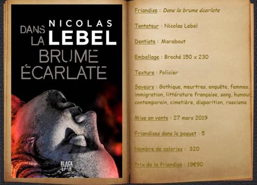 Dans la brume écarlate - Nicolas Lebel