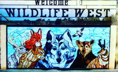 Voyage dans la terre des loups