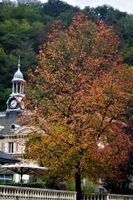 Les couleurs d'automne tarde...!!!