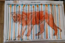 Petits de VIS : comment travailler le graphisme chez les petits? LES LIGNES VERTICALES