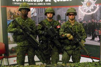 Les Voltigeur du Québec