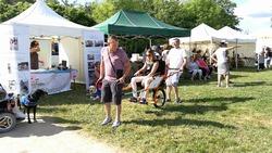 Festival du Printemps à Verrières en Anjou 03/06/18