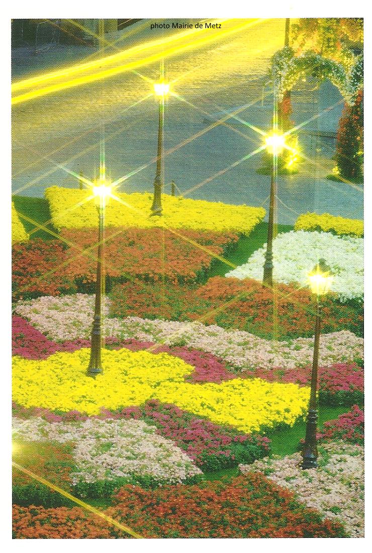 Image De Parterre De Fleurs des parterres de fleurs. - metz p'tits bonheurs