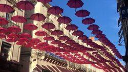 Les parapluie de Cleebourg 6.