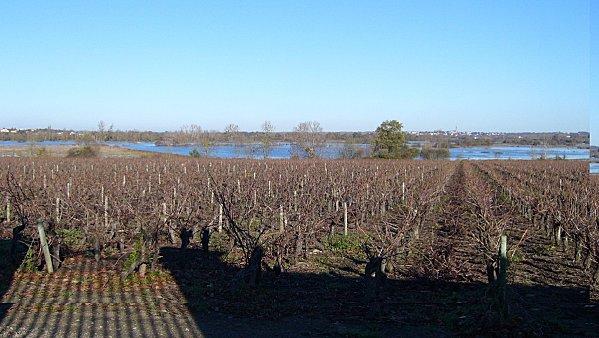 Marais de Goulaine - 11-2006