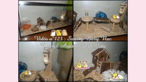 Hamster | Nouvel aménagement de Cuty