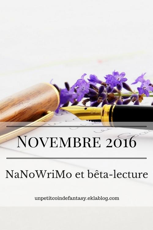 Retour sur le mois de Novembre : bêta-lecture et NaNoWriMo