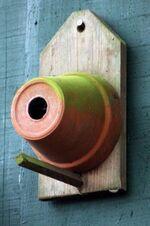 Des belles idées récup et recyclage pour le jardin