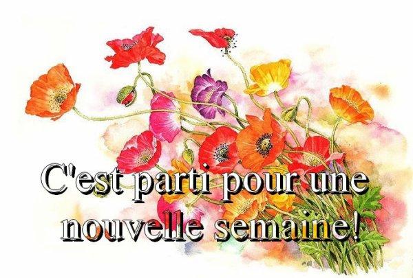 Bon Lundi Et Bonne Semaine, Les Ami(e)s - améthyste