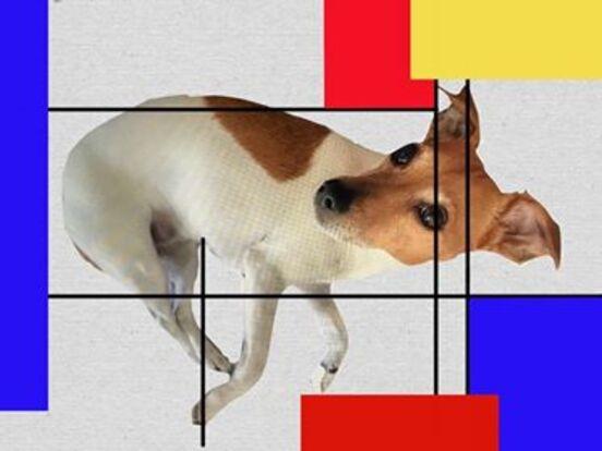 Module Art et Géométrie - Piet Mondrian