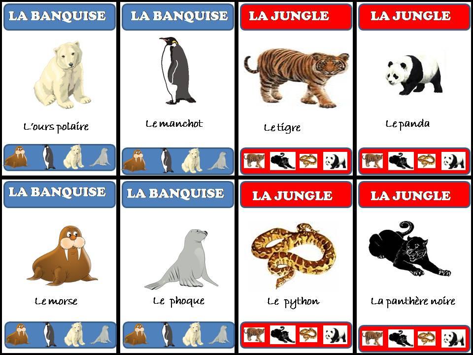 Beautiful Jeu 7 familles des animaux - lamaterdeflo RG23