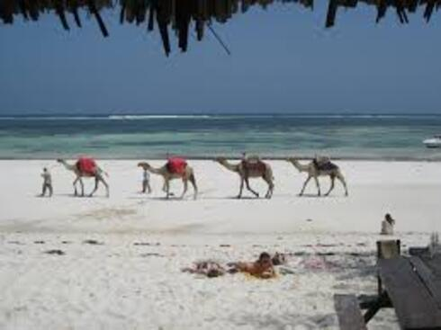 AAA- 2011/2012 - Kenya -Mombasa - Année sabbatique - Sabbatical year