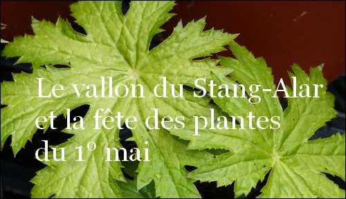 Le vallon du Stang-Alar et la fête des plantes du 1° mai