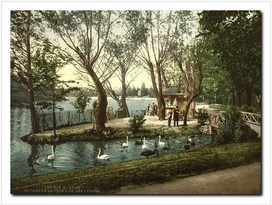 Parc de la Tête d'Or et le Lac