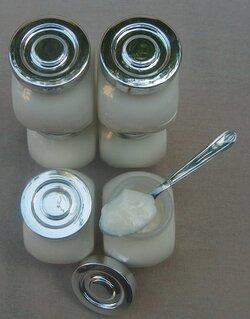 Yaourt sans yaourtière, sans cuiseur vapeur et même sans four!