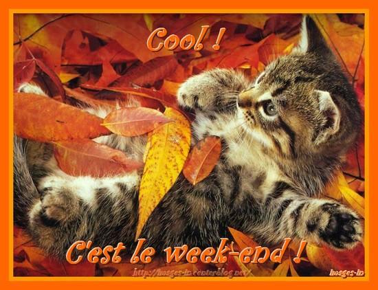 Bon Samedi et Bon Week-End - améthyste